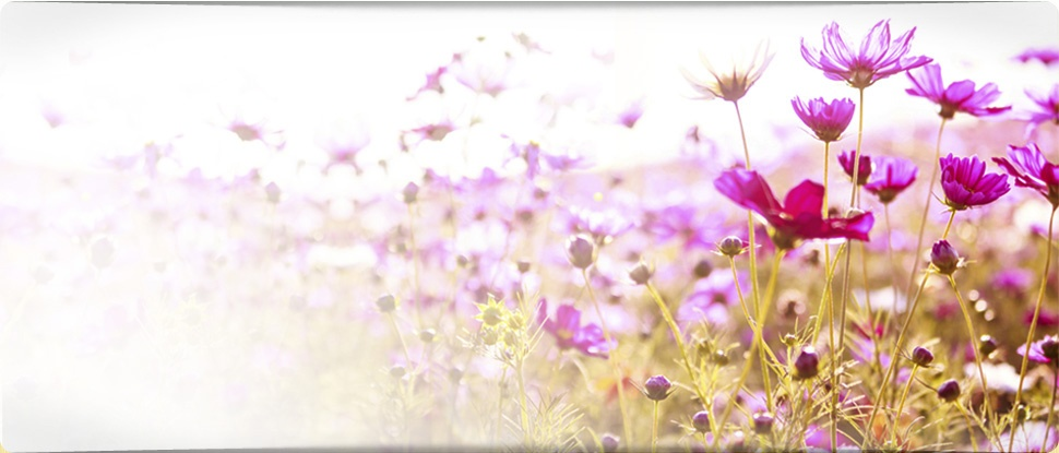 Floresencial - sedes